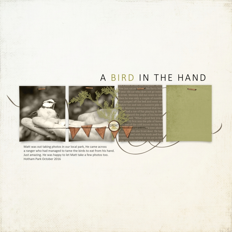 a-bird-in-the-hand